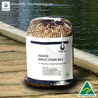 Barley Straw Bale - 100g For the Prevention of New Algae Growth in Dams & Ponds