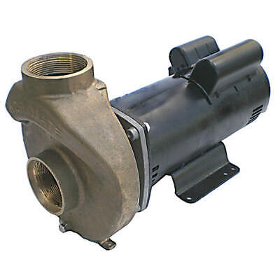 DAYTON Pool/Spa Pump,3 HP,3450,230V, 5PXD8