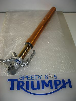 Triumph Daytona 675 R Ohlins Right Front Fork Genuine 2010 To 2012 T2041422