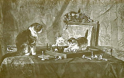 Old Antique RONNER KNIP Art Print Cat & Kittens Chess Game Board LAST MOVE