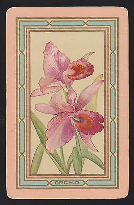 1 Single Vintage Swap Playing Card Usnn Flower 'orchid Or-1-1-A' Linen
