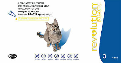 Revolution-Flea-And-Worm-Treatment-For-Cats-BLUE 2.6-7.5kg