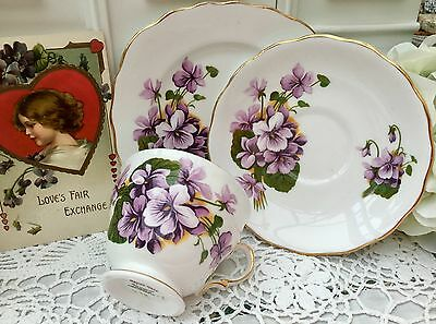 ROYAL VALE BONE CHINA 1950/60s TRIO CUP SAUCER PLATE SET - PURPLE VIOLETS GILDED