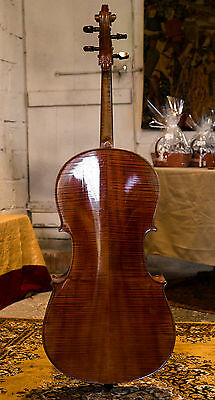 French cello from beginning of 20th century