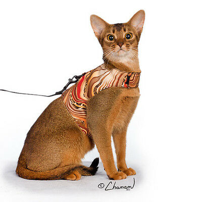 Cat Walking Vests with Included 5' Matching Leash - Limited Edition - Size Small
