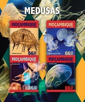 Z08 IMPERFORATED MOZ16117a MOZAMBIQUE 2016 Jellyfish MNH