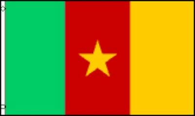 Cameroon National Flag 2' X 3' Banner