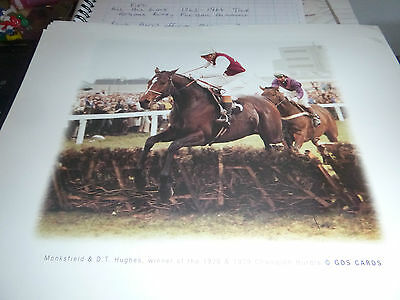 "Lovely A4 Size Horse Racing Print By Gds Cards "" Monksfield  """