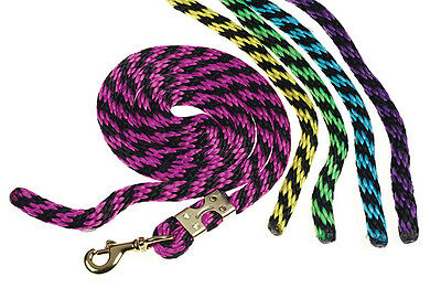 NEW Bridleway Jester Two Tone Bright Colour Lead Rope 2m - Swivel Trigger Clip