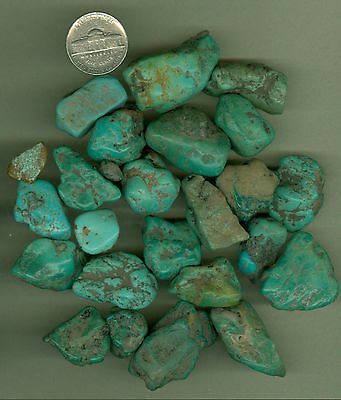 133 Grams Of Nevada Stabilized Fox Turquoise Nuggets Rough