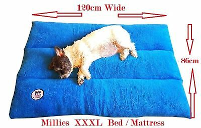 """""""MILLIES"""" Deluxe Orthopaedic Soft Dog Pet Warm Sofa Bed Cushion Chair XXLarge"""