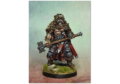Viking / Blood Rage / Frostgrave / AD&D / Barbarian / frostgrave infantryman