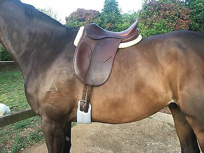 Syd Shill Show Saddle - 16.5 Inch - Medium Gullet - Brown -Show/dressage/turnout