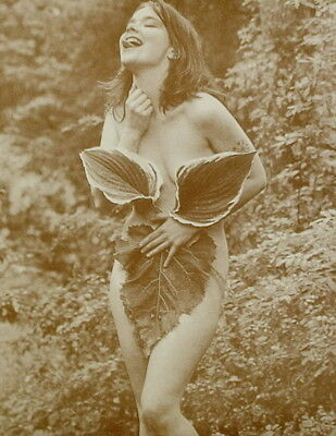 """Bjork Poster Print - Nude In The Leaves - 11""""x14"""" Sepia"""