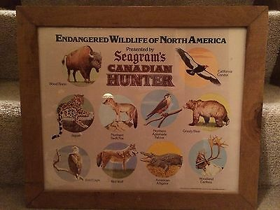 Seagram's Canadian Hunter Whiskey Endangered Wildlife Framed Print Advertising