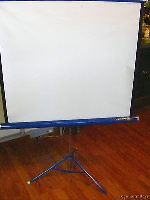 VTG Da-Lite Flyer Projector Screen-Paint Chipped-Some Stains & Damage to Screen