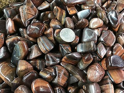 1000 Carat Lots of Polished Tumbled Red Tiger Eye + FREE Faceted Gemstone