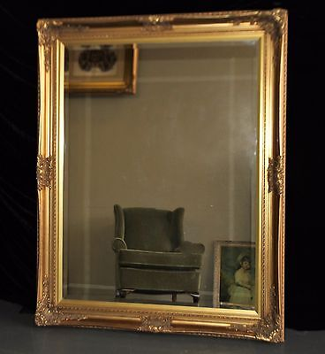 Ex Display - Huge  Ornate French Baroque Style Gold Gilt Floor Or Wall Mirror