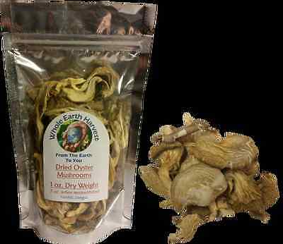 Dry Oyster Mushroom 100 Grams 3.5 Oz Pure And Organic