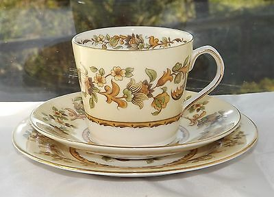 Elizabethan English Fine Bone China Autumn Song Pattern Trio Cup Saucer Plate