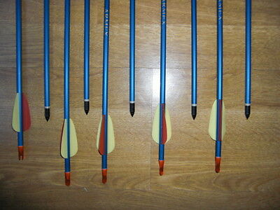 "10 x 30"" ALLOY BLUE  ARCHERY ARROWS  SCREW TIPS SALE PRICE !!!!"