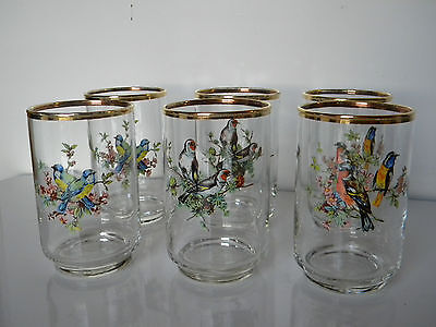 6 Gold Trimmed Assorted Song Bird 10 Oz. Juice Or Drinking Glasses Tumblers