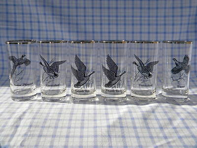 Vintage Bird Drinking Glasses~Silver Trim~ Goose~Canvasback~Pheasant~Grouse