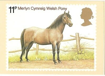 GREAT BRITAIN -  WELSH PONY -  POST CARD PHQ30(c) - 1978