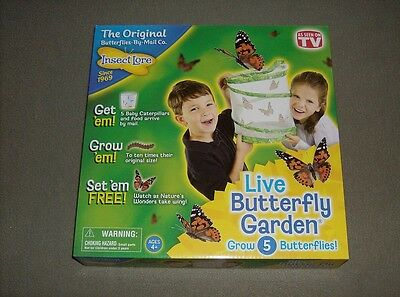 Insect Lore 1010 Live Butterfly Garden Childrens educational toy new ages 4 +