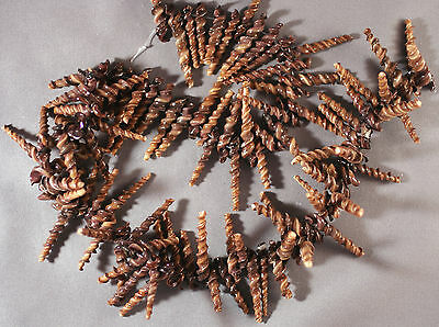 "Natural Chocolate Brown Choco Stick Spiral Shell Beads 25-35Mm 14"" Str"
