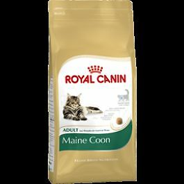 Royal Canin Maine Coon Adult 31 4 kg