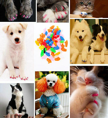 Hot Simple Soft Rubber Pet Dog Cat Kitten Paw Claw Control Nail Caps Cover 20Pcs