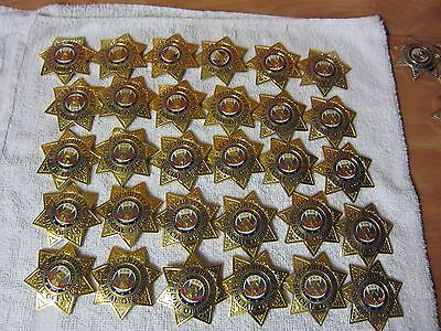 Hero's Pride Security Officer Gold Finish 7 Point Star Badge. FREE SHIPPING.