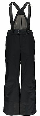 Spyder Mens Dare Tailored Fit Pant 2015