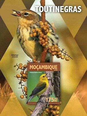 Z08 IMPERFORATED MOZ16130b MOZAMBIQUE 2016 Warblers MNH
