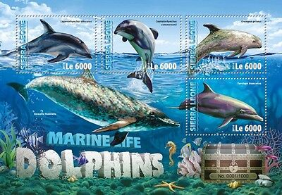 Z08 Imperforated SRL16302a SIERRA LEONE 2016 Dolphins MNH