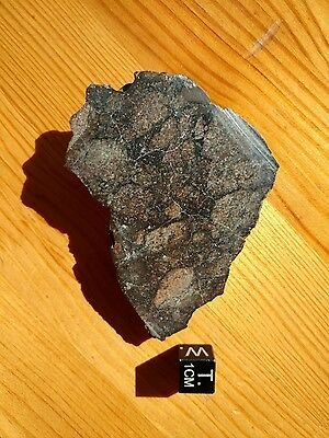 Unclssified NWA HED Achondrite Probable Monomict Eucrite Meteorite End Cut 47.6g