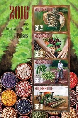 Z08 MOZ16214a MOZAMBIQUE 2016 Year of Pulse MNH