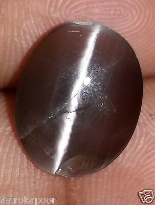 5.65 CT African Cats Eye Natural AAA+ Excellent Quality Loose Beautiful Gem 80