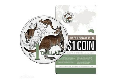 2014 $1 Coloured Mob of Roos 30th Anniversary Uncirculated Coin