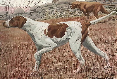 Old Antique Vintage Art Sports Canine Print Hunting Bird Dog POINTER Gift matted