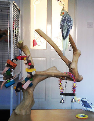 Java Wood Tree Perch And Table Birds Large Budgie, Cockatiel, Lovebird, Parakeet