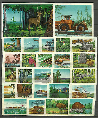 RUSSIA 1971  Matchbox Label - Forest - our wealth (catalog #224)
