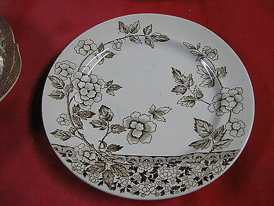 Aesthetic Movement Brown Transferware Plate J.f. Wileman Foley  Pottery Albert