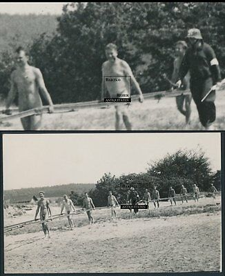 Foto 2.WK Nude Soldiers and Steel Helmet Guard Man w Rifle Gay Int RARE !