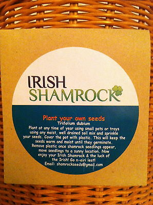 St Patrick's Day 3 Leaf Shamrock, Seed Packet Plant Your Own Young Clover Seeds