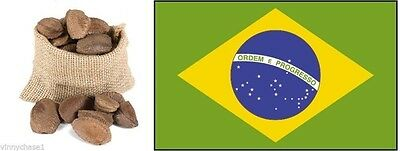 Brazil Nuts in shell- 2 lbs-Bertholletia excelsa