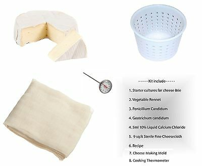Cheddar Hard Cheese Full Making Kit + Mold With Follower Large For 2.2lbs/1kg