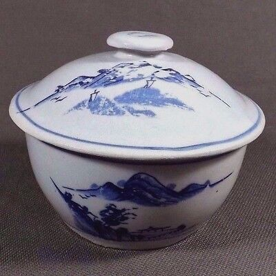 Antique Hand Painted Blue & White Chinese Ceramic Jar (Old Porcelain China Pot)