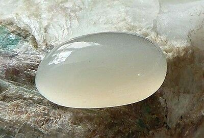 MOONSTONE MONDSTEIN (18,7 x 10,5 mm) helles creme Cab. oval 10,96  ct